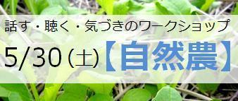 150516WS_ban.jpg