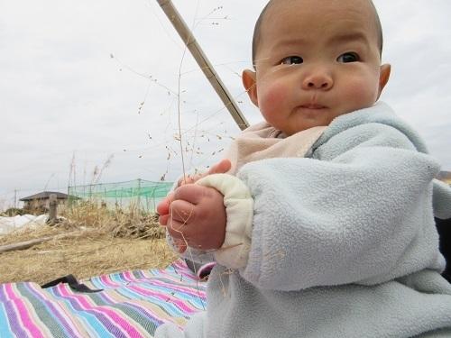 IMG_6203zassou_baby.JPG