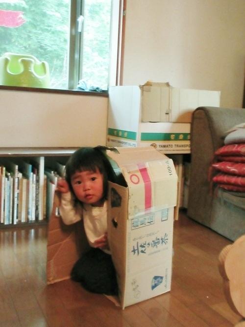 IMG_8501tiny_house.JPG