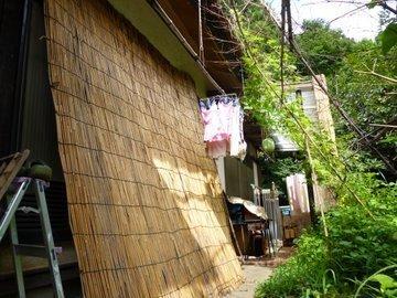 P1060732yoshizu.JPG