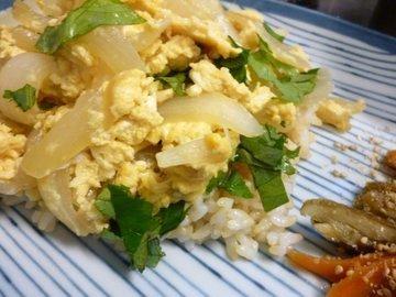P1140054mottainai_cooking.JPG