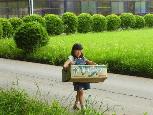P1140077_homeschool.JPG