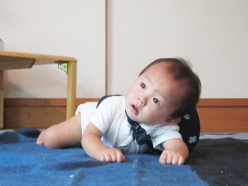 IMG_0795IMG_0763A_BD_isshoumochi.JPG