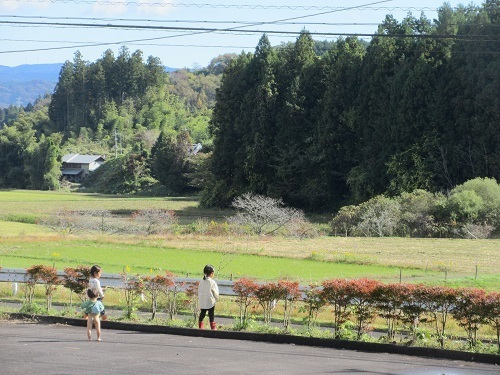 IMG_2801omutsunashi_ikuji.JPG