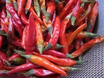 IMG_3046red pepper.JPG