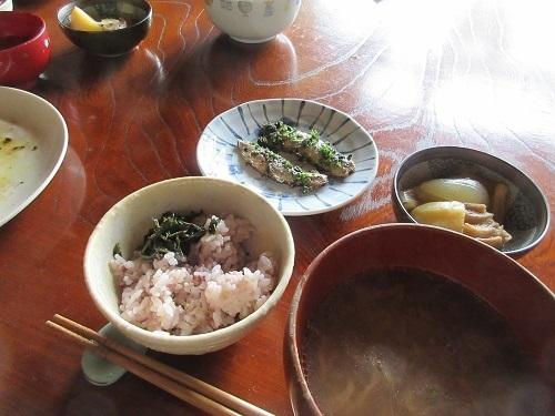 IMG_3098iwashi_herb.JPG