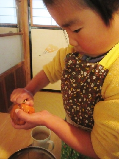 IMG_5243kakisu.JPG