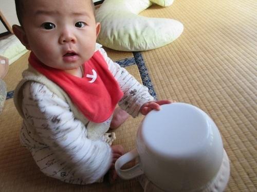 IMG_5290omutsunashi_ikuji_omaru.JPG