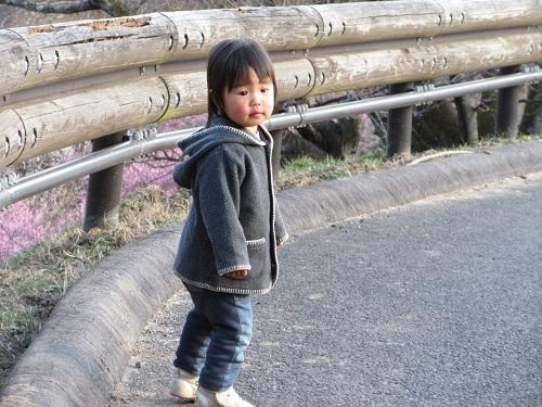 IMG_5596tsukubasan_bairin.JPG