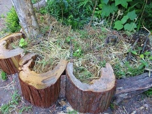 IMG_7966wooden_kitchen_garden.JPG