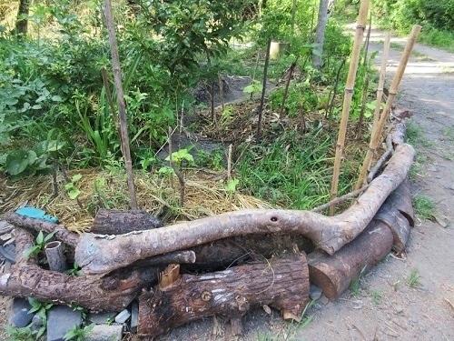 IMG_7970wooden_kitchen_garden.JPG