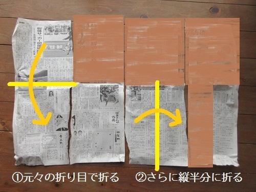 IMG_8535orikata_shinbunshi_nae_pot.JPG
