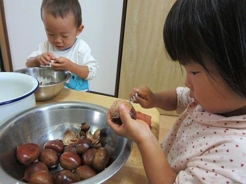 IMG_9196kuri_kawamuki.JPG