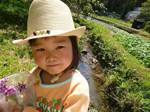 P1000117_C_ogawa_suigen_kochi_20120428.JPG
