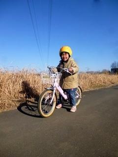 P1100815yagi_kusakari.JPG