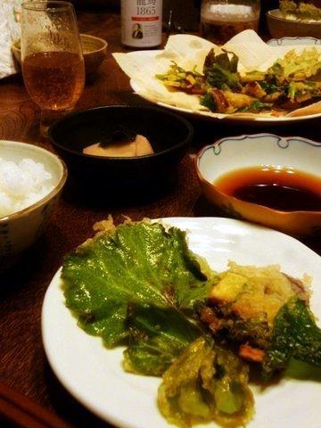 P1120697kakinoha_yukinoshita_tenpula.JPG