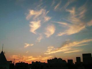 gotanda_sunset_oisix.jpg